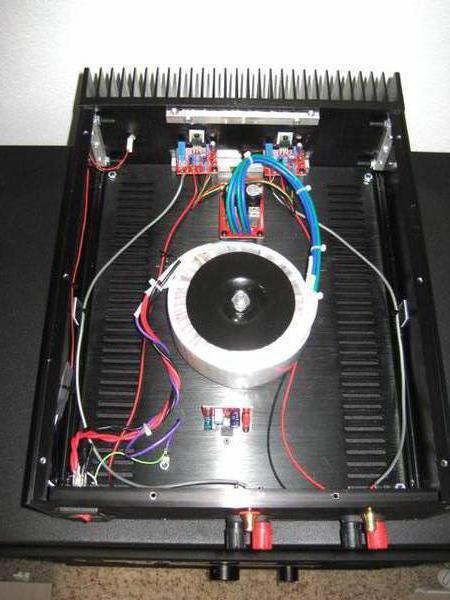 Chip amp.jpg1
