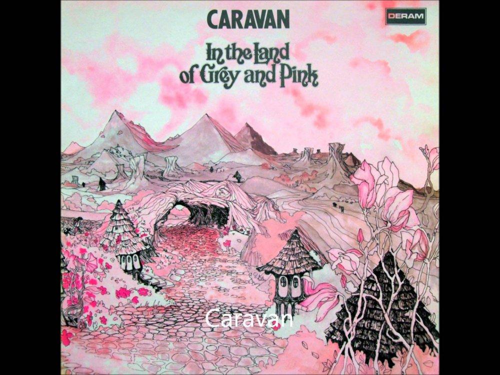 Caravan pink.jpg