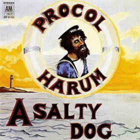 Proco Salty Dog.jpg