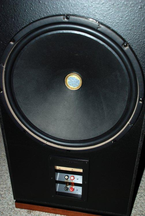 speakers_forte_lll-3.JPG
