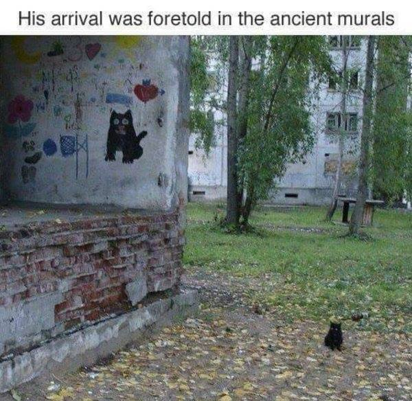 The Cat Arrival Foretold.jpg