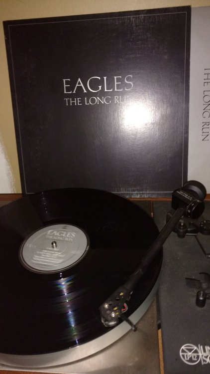 Eagles-LongRun.jpg