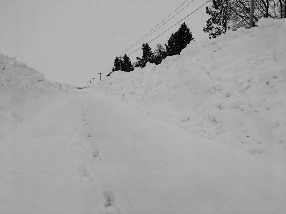 2074887226_snow3.thumb.jpg.e068afed6309bedba776023809116ece.jpg