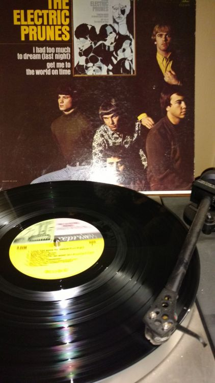 Electric Prunes - Too Much to Dream.jpg