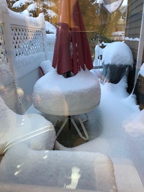 Oct 2019 Snow.jpg