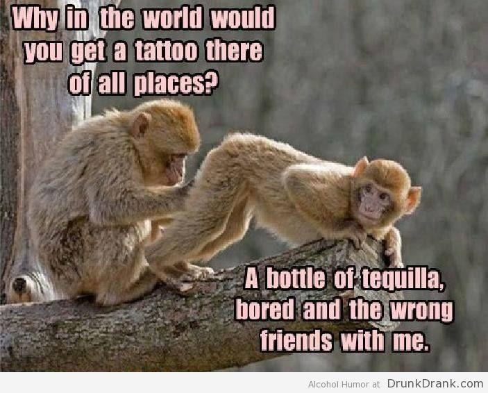 c7f3999e367b7c13642c00c1520d56d4--tequilla-alcohol-humor.jpg
