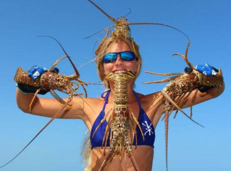 lobster.jpg.pro-cmg.jpg