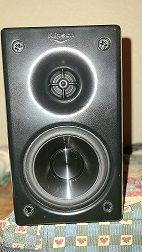 Speaker 2a.jpg