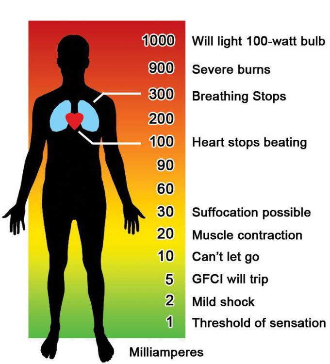 how-electricity-affects-the-body.thumb.jpg.4048c2b7e6506273798072f928b5d4c1.jpg