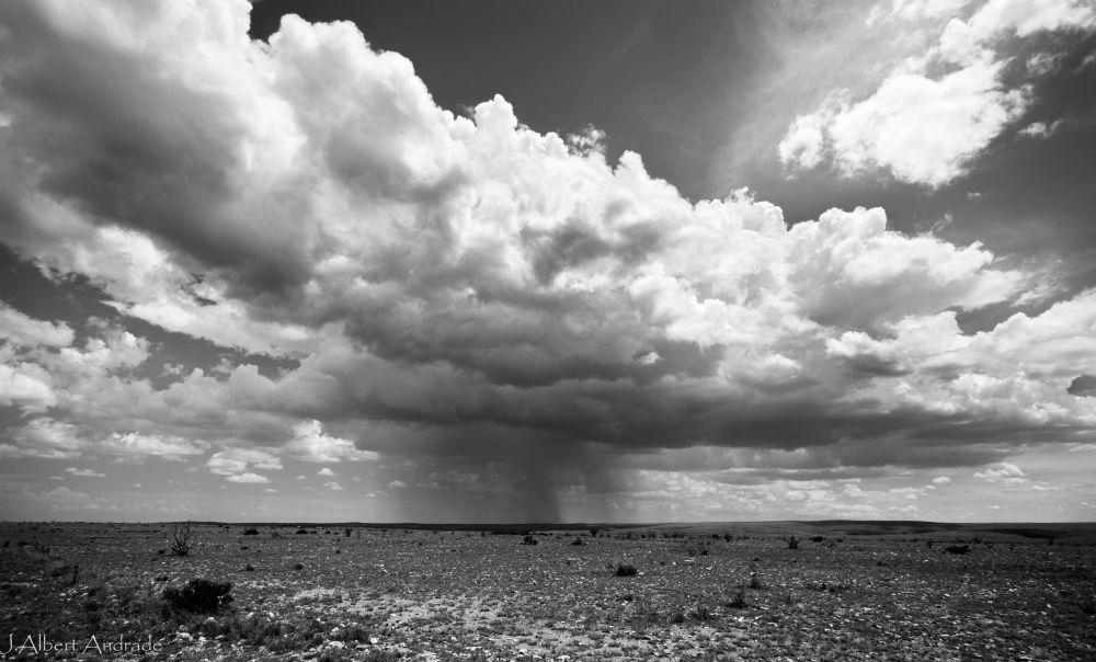 Artesia Skies-2.jpg